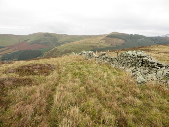 Stone wall on Whinlatter