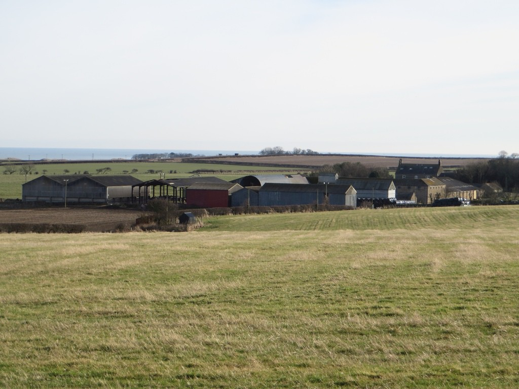 A grass field with the farm buildings at Burton behind