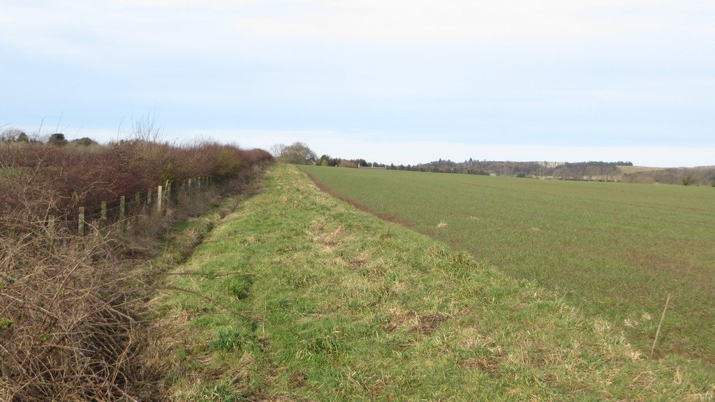 A footpath follows a field margin south of Bradford