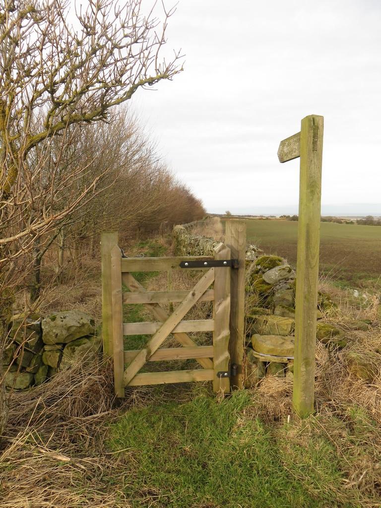 Footpath gate into a woodland