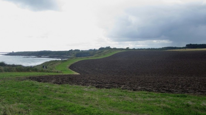 ploughed field beside the path