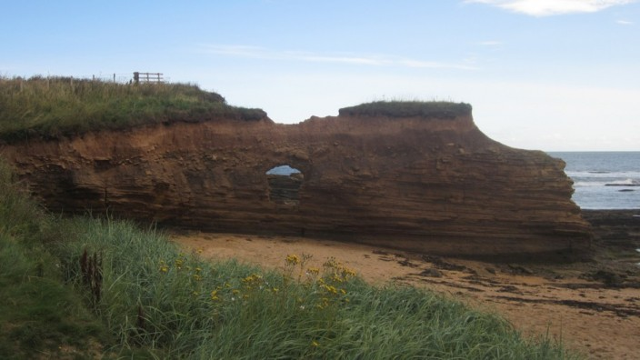 Eroding outcrop at Howick Haven