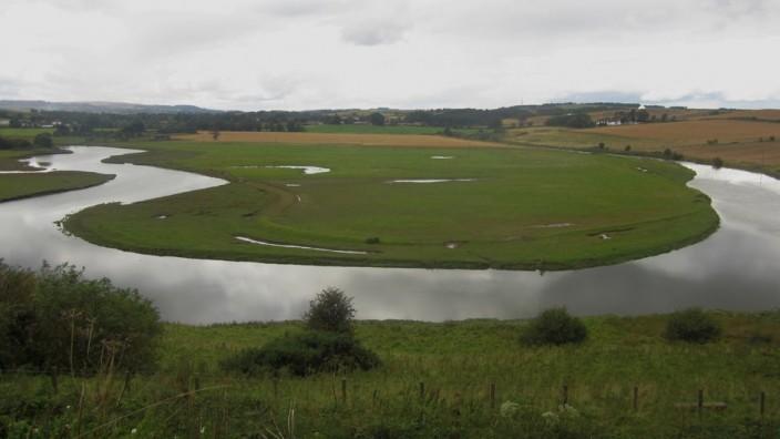 River Aln Meander