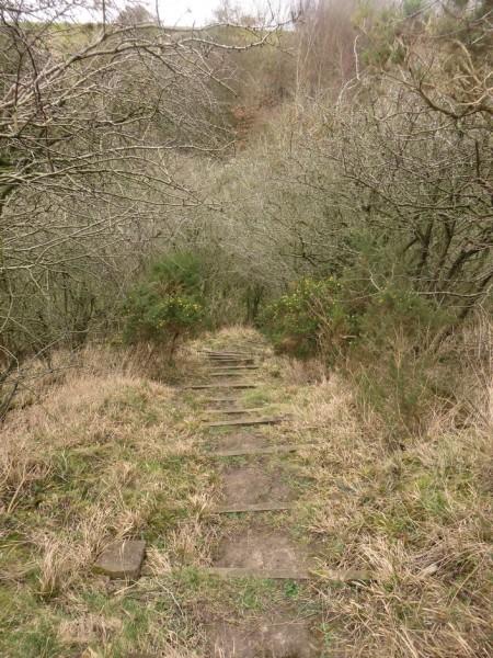 Steps descending to the riverside