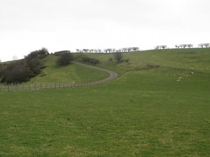 Grassland at West Ord