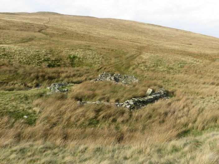 Ruined Sheepfold