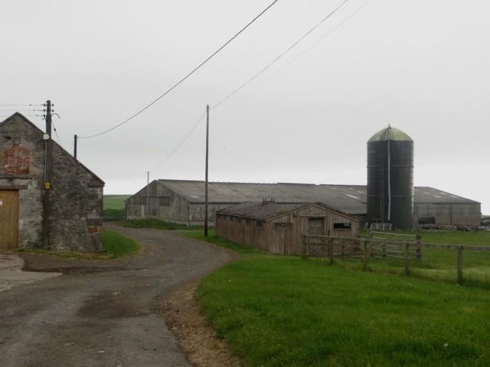 Lumsdaine Farm