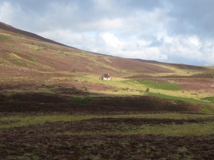 Heather and Ryvoan Bothy