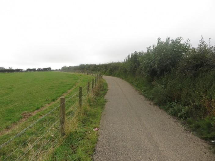 A segregated cycle path